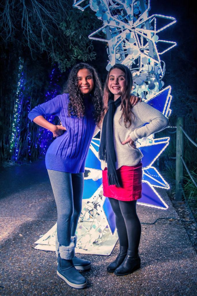 TXU Energy Presents Zoo Lights at the Houston Zoo